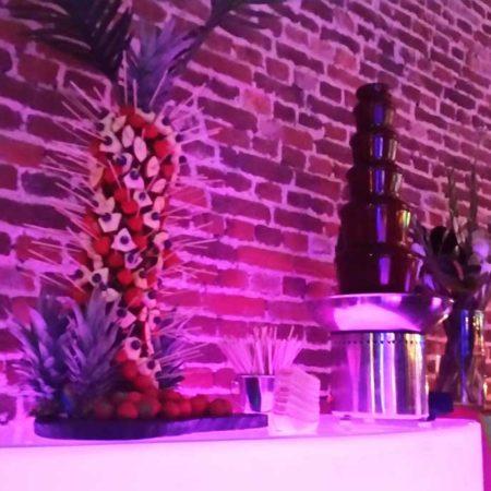 Large chocoladefontein met fruit palmboom