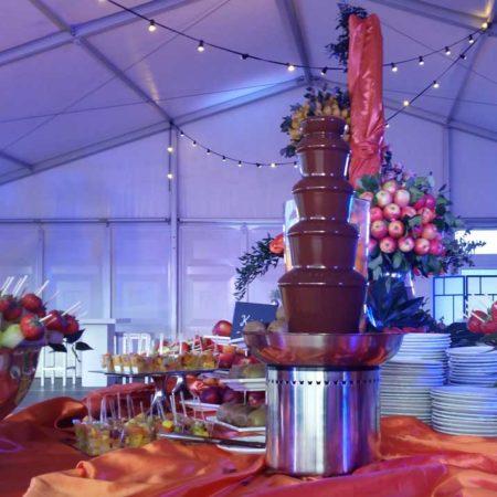chocolade met fruit buffet